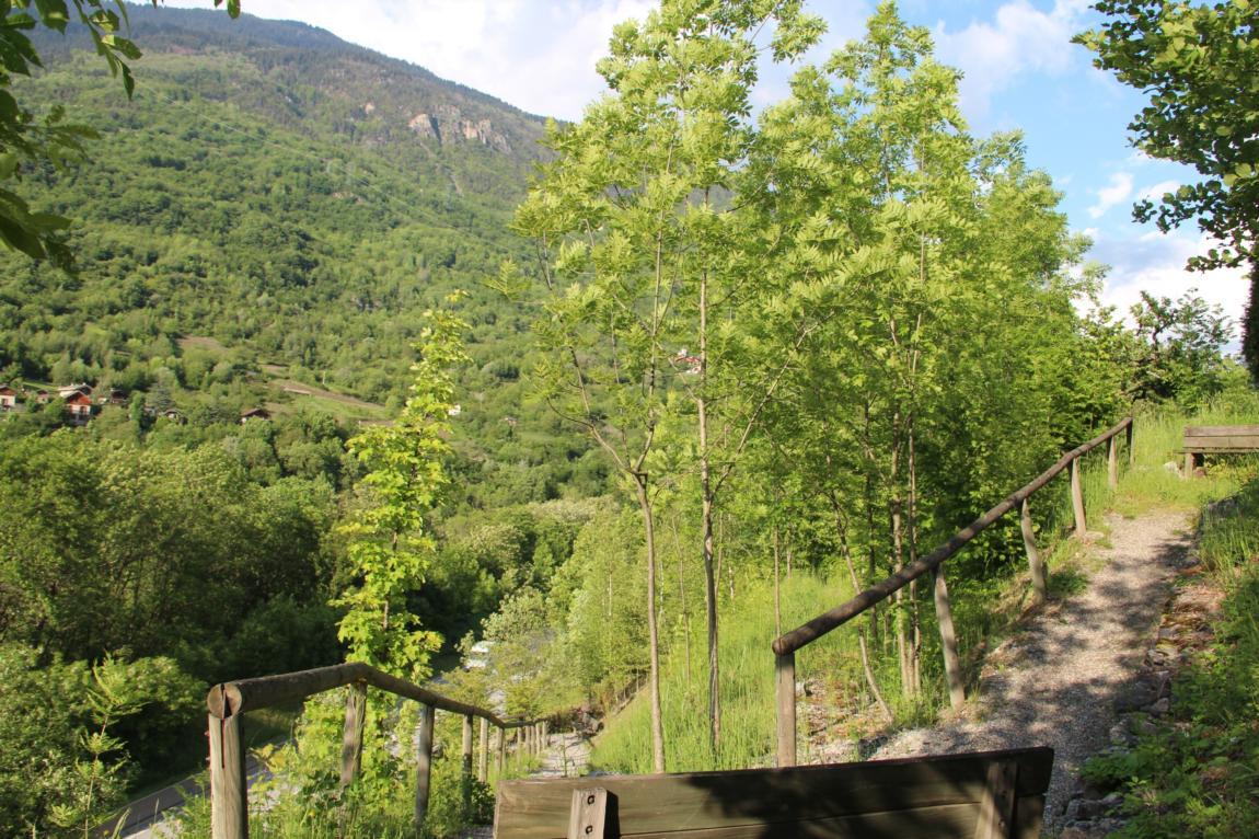 Le village de Villarnard par les Chavonnes