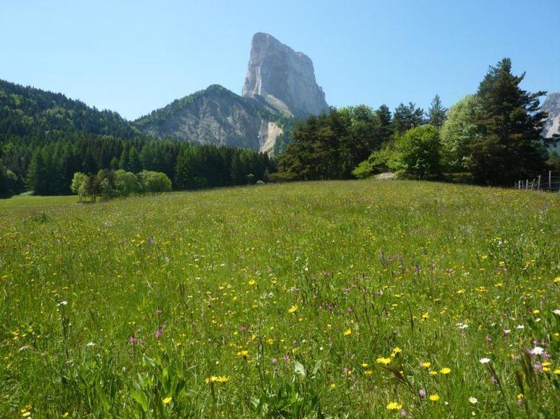 Mont Aiguille en été
