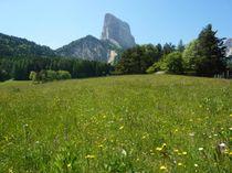 sitraPan309921_381193_mont-aiguille--o-zanardi-16