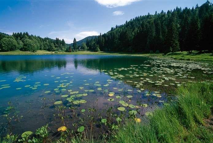 Randonn e le lac genin site officiel de l 39 office de tourisme haut bugey nantua oyonnax - Office de tourisme nantua ...
