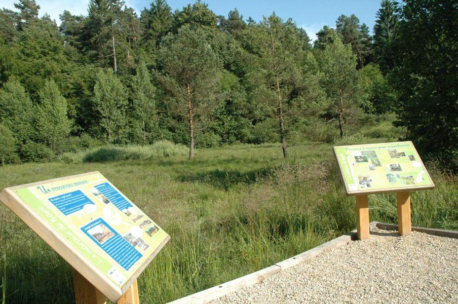 Balade autour de napt site officiel de l 39 office de tourisme haut bugey nantua oyonnax izernore - Office de tourisme nantua ...
