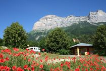 sitraCAM1026476_209048_camping-coquelicots-reduit