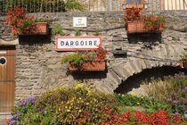 Dargoire