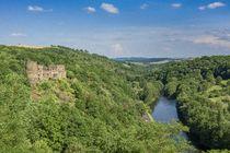 Château de Chouvigny et vallée de la Sioule Ⓒ Luc OLIVIER