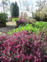 Le printemps est arrivé au Gîte de l'Ovalie  Ⓒ Gîtes de France