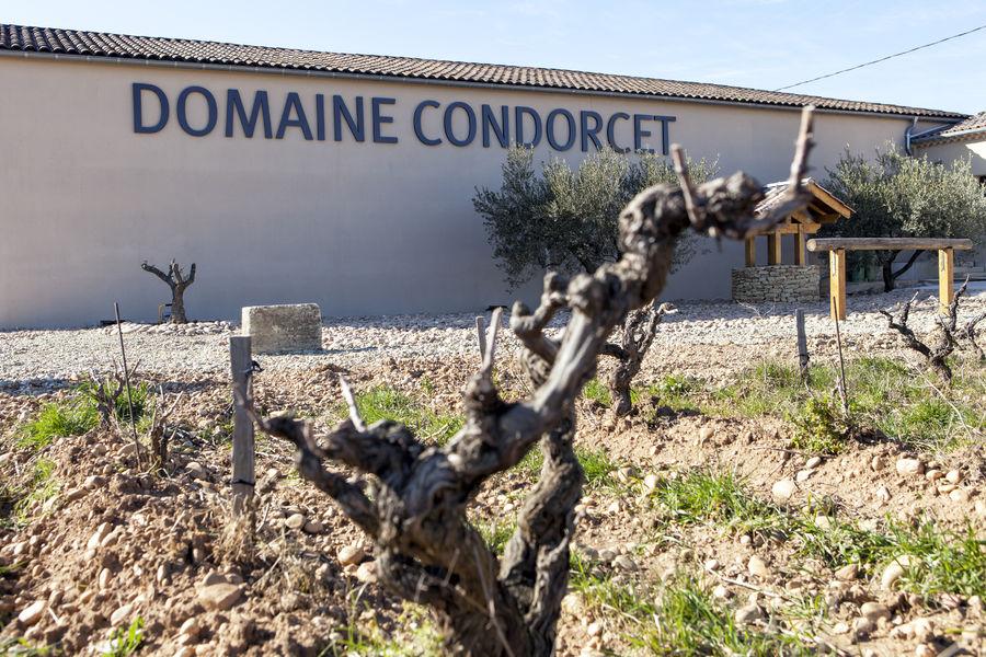 Oenotourisme au Domaine Condorcet