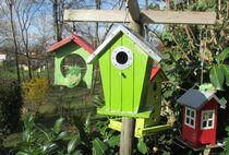 Les oiseaux sont aussi de sortie  Ⓒ Gîtes de France