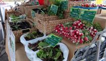 Foire Agricole - Saint-Julien-du-Serre