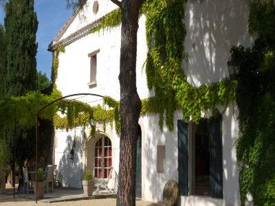 La Tonnelle - Le Vieux Platane