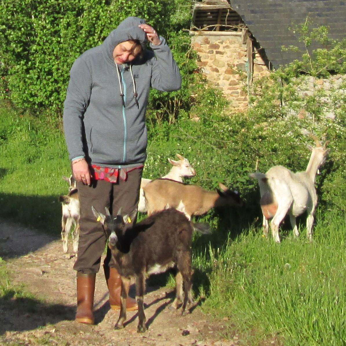 Découverte du cheval de trait au travail - Le Mayet-de-Montagne Une participante entourée des chèvres Ⓒ Jardins et Chevaux-E. PONSIGNON 2015