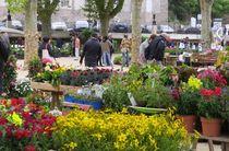 Floréales 2020 - 10è édition - Vals-les-Bains