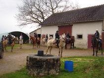 Centre de tourisme équestre Les Verts Ⓒ S. Westermann - 2019