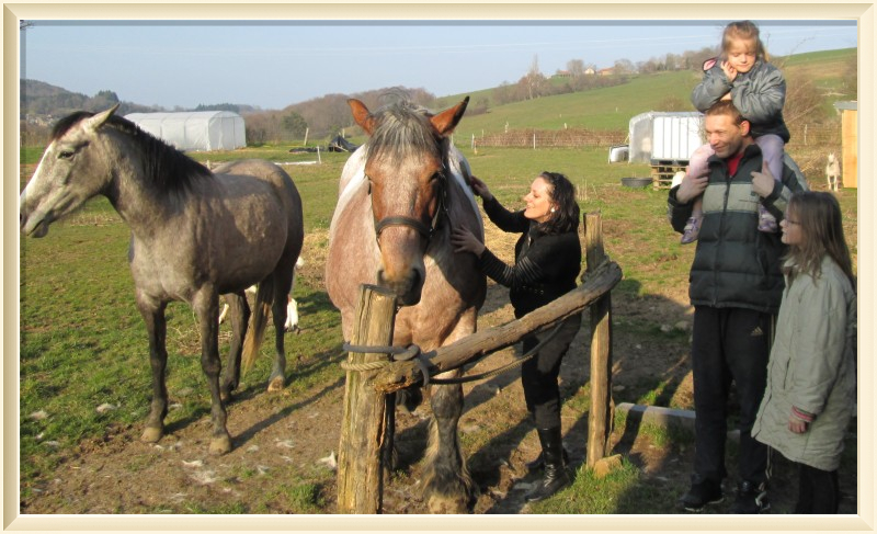 Découverte du cheval de trait au travail - Le Mayet-de-Montagne Une famille autour d'Ursina Ⓒ Jardins et Chevaux-E. PONSIGNON 2015