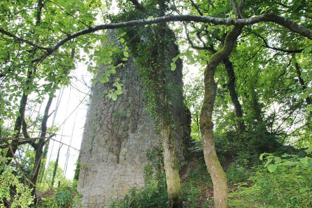 Château ruiné de Mont Didier