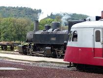 Safari photo au Train de l'Ardèche - Journées Européennes du Patrimoine - Saint-Jean-de-Muzols