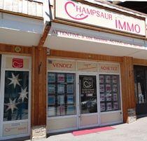 Agence Champsaur Immo - © Agence Champsaur Immo