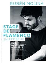 Stage de danse de Flamenco de Ruben Molina - Darbres