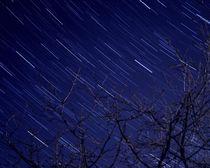 La Nuit des Étoiles - Chassiers