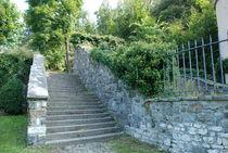 vizille patrimoine jardin du chateau du roy ruine (13)