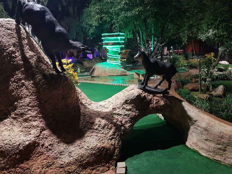 Mini Golf - Photo 5