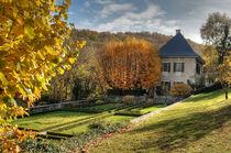 charmettes-automne-photoSolennePaul