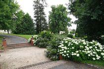 Jardin Louis Neillot Jardin Ⓒ Service Espaces Verts Désertines