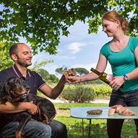 Pique-Nique dans les Vignes- Domaine de Jale
