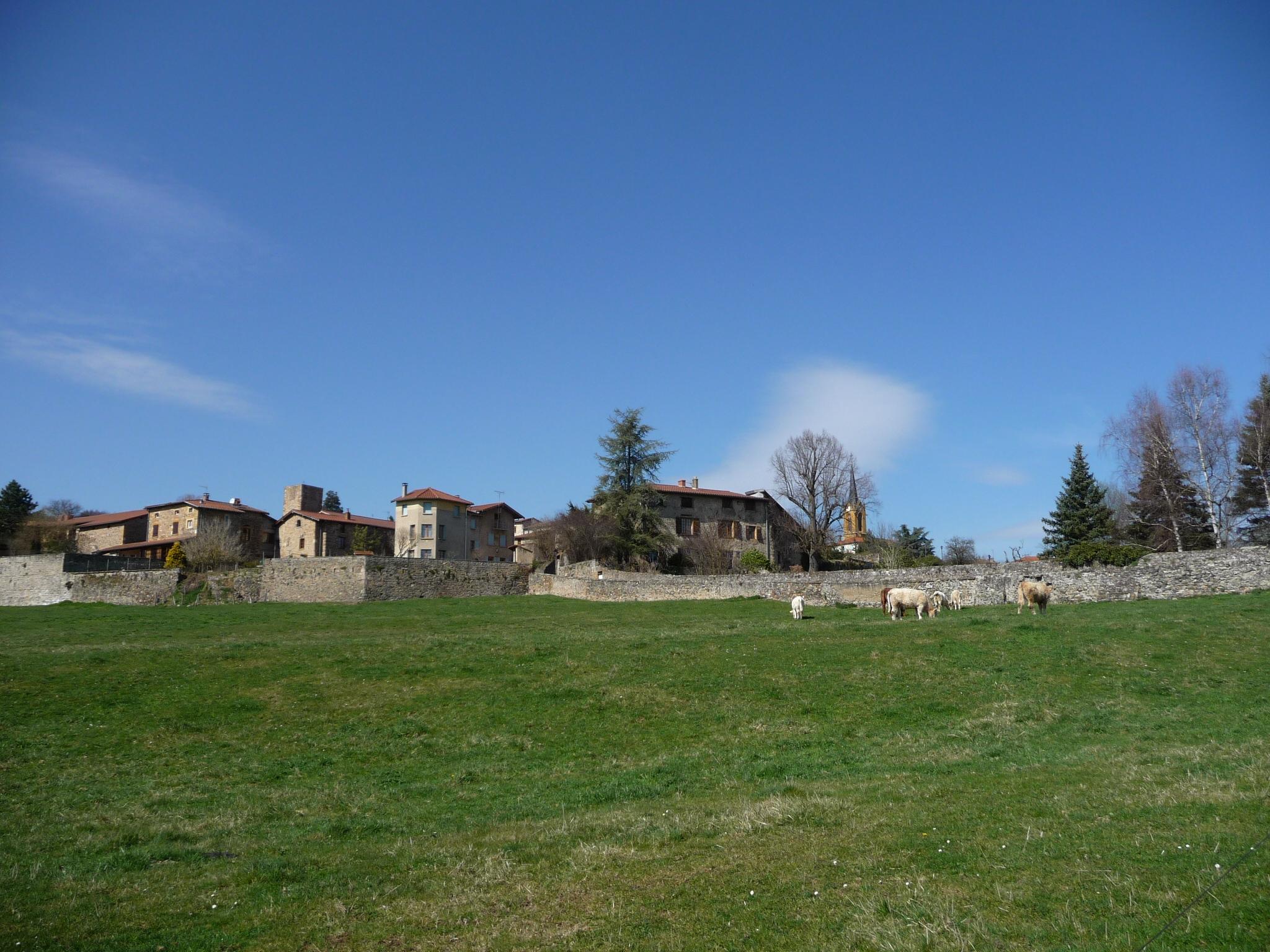 le bourg de Savigny