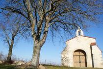 Chapelle de Briailles Ⓒ Association Chapelle de Briailles