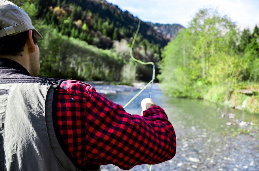Quels automobiles vaut mieux pour la pêche