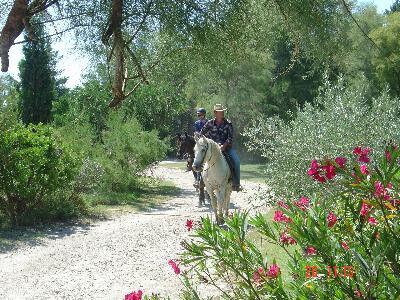 Promenade à cheval à la Bergerie d'Alivon
