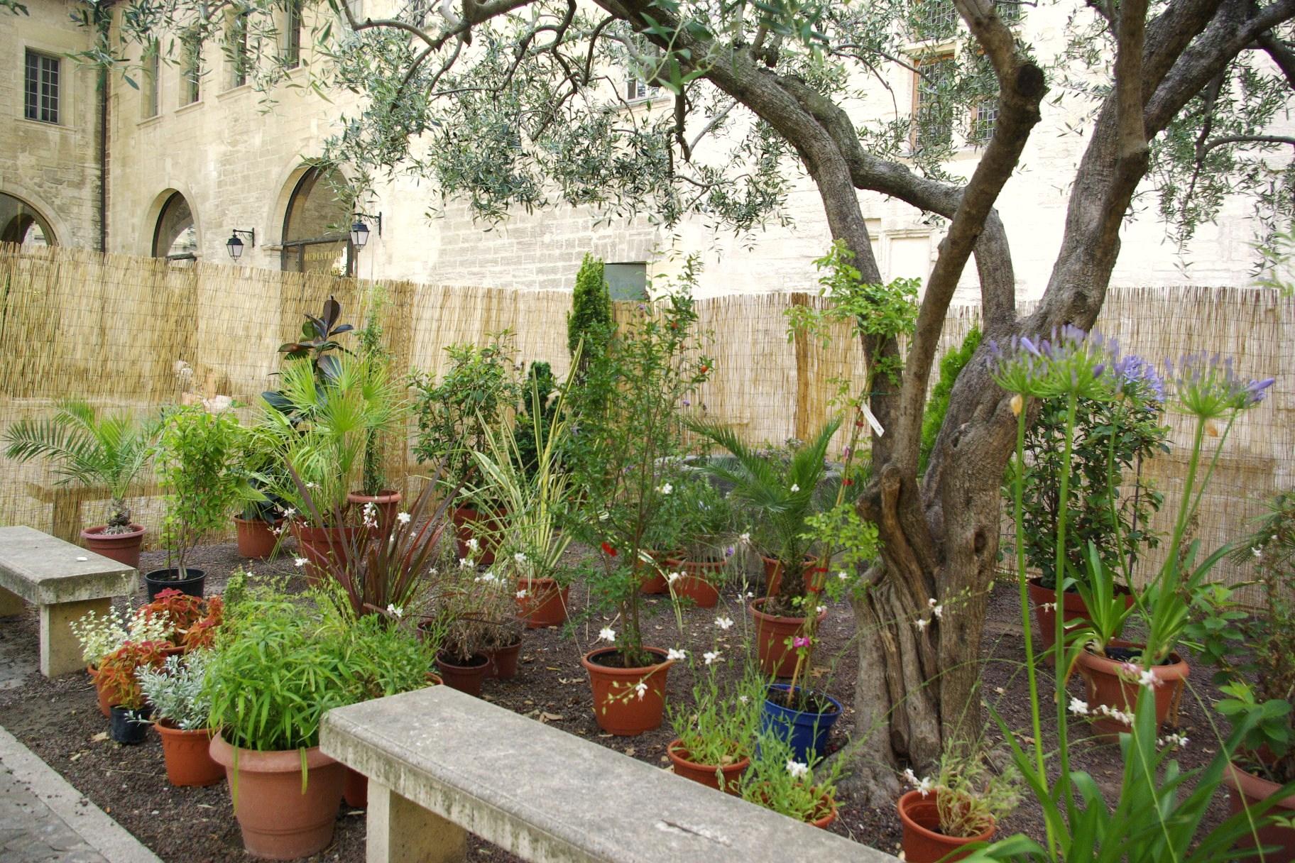 Jardin Ceccano