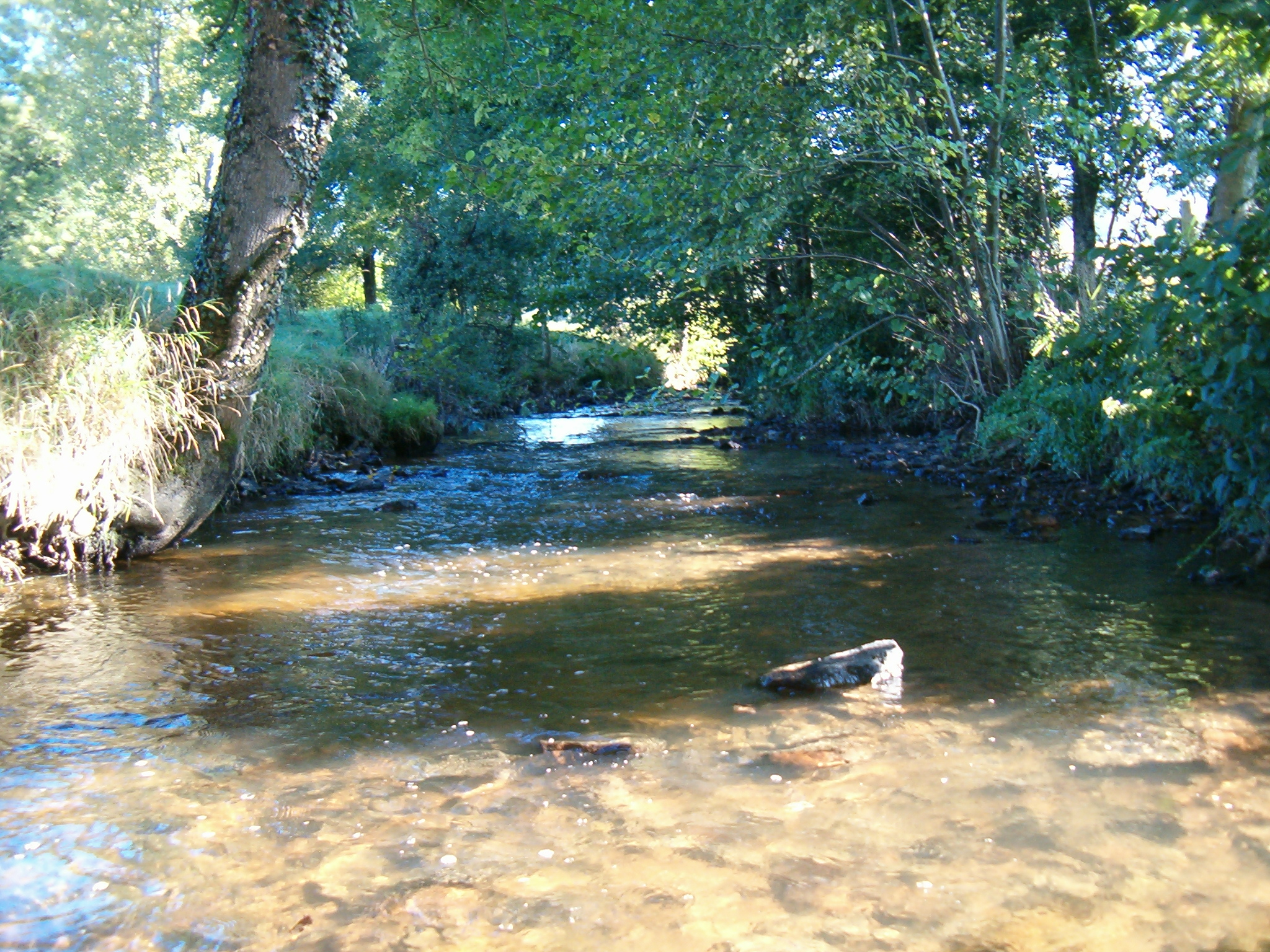 P che cours la ville la trambouze beaujolais vert - Site officiel office de tourisme de cauterets ...