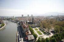 Jardin de Ville03©thierry CHenuService Photo Ville de Grenoble