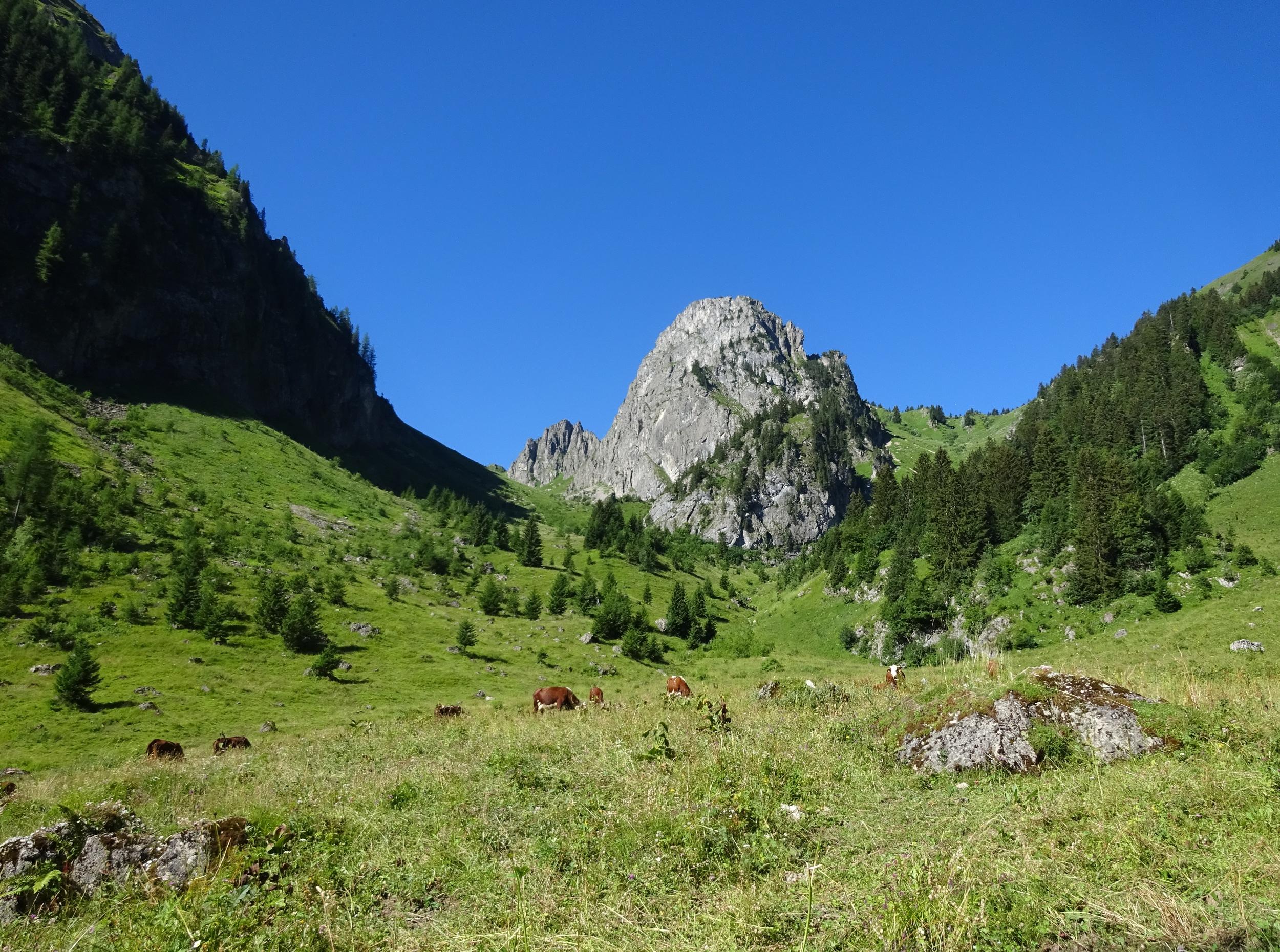 Mont Brion randonnée