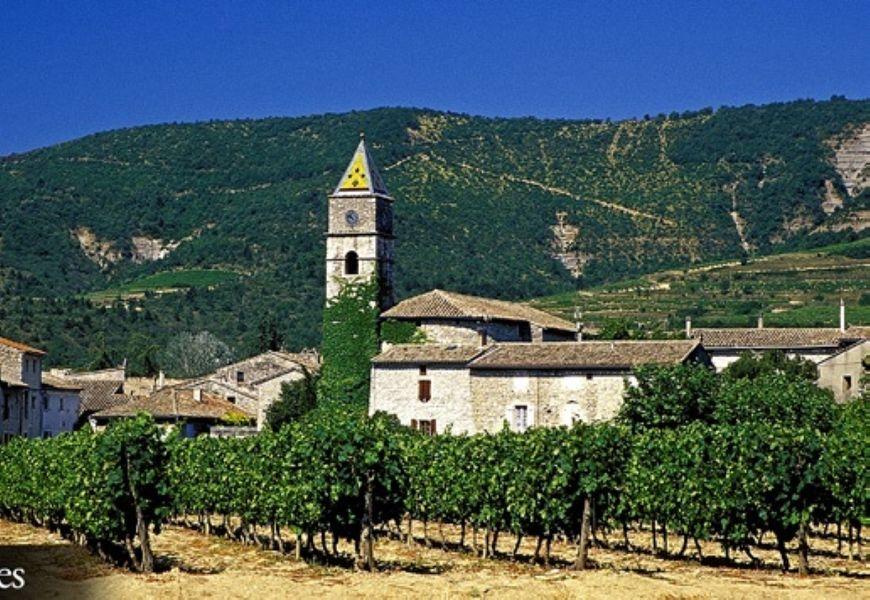Promenade commentée autour des paysages viticoles de Valvignères - Alba-la-Romaine