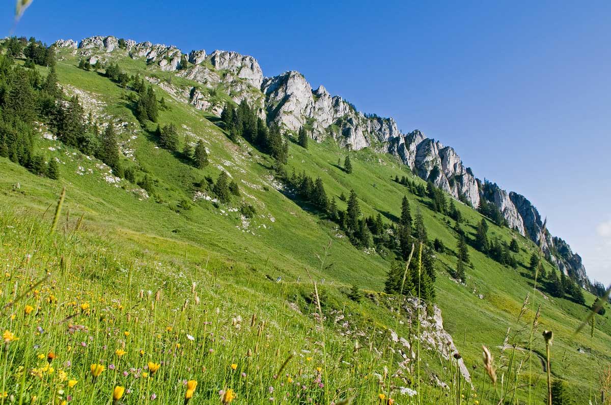 Le Mont-Ouzon