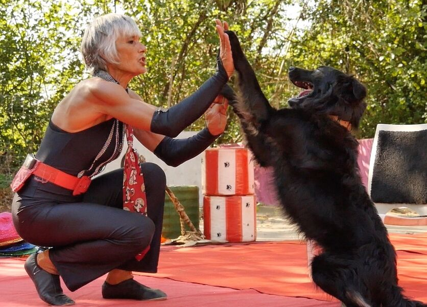 Spectacle canin - Ruoms