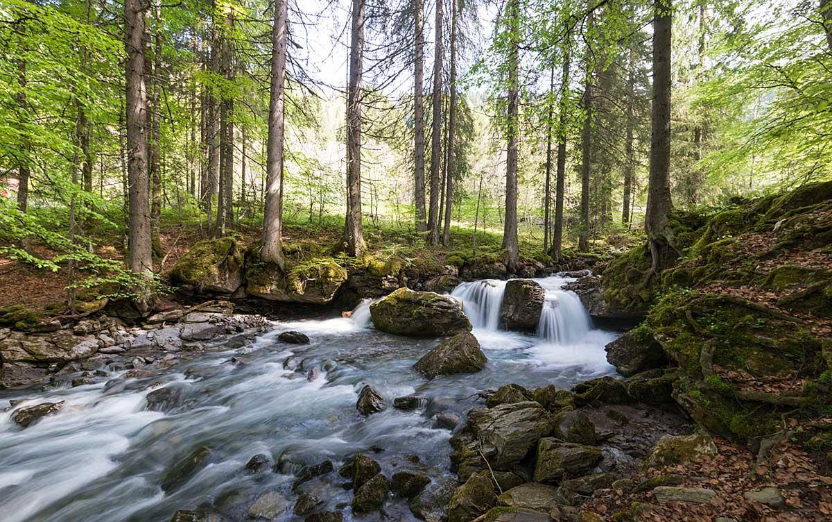 Cascade d'Ardent, belvédère du Lac de Montriond