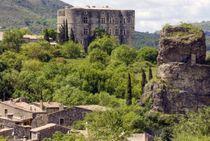 Visite guidée du bourg médiéval d'Alba et du hameau de la Roche - Alba-la-Romaine