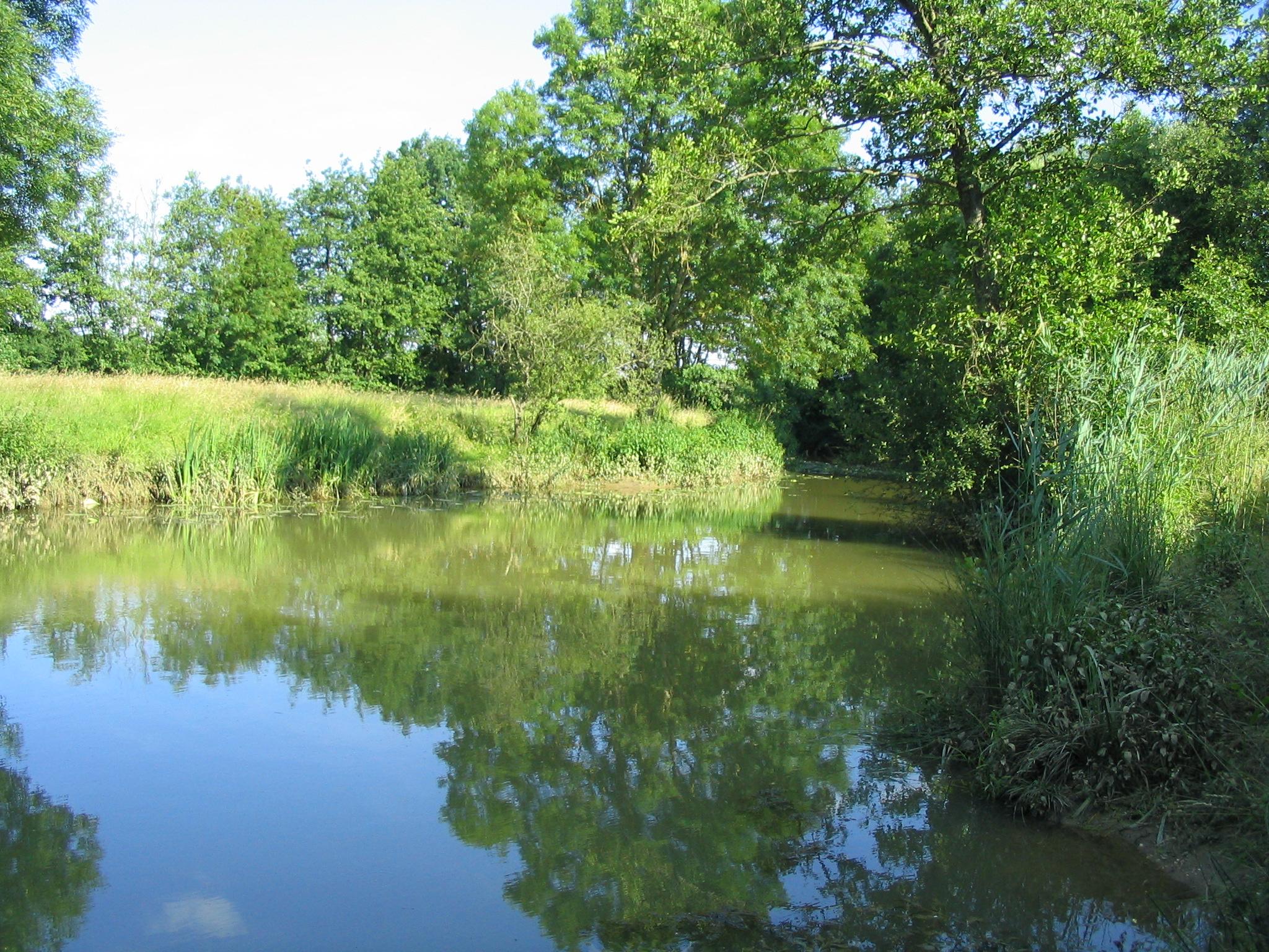 La pêche sur Le Solnan et Bas Sevron