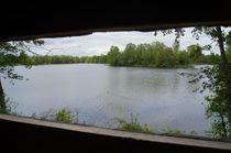 ENS de la Vauvre - Nassigny Forêt alluviale Ⓒ Réserve Naturelle