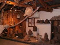 Musee de l'Abeille -Comps