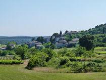Bidon vue du village (5)