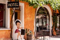 ©M.Rissoan-ADT07-Salavas-Hotel des Sites (3)