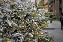 Festivité de Noël  : animations à Tournon - Tournon-sur-Rhône