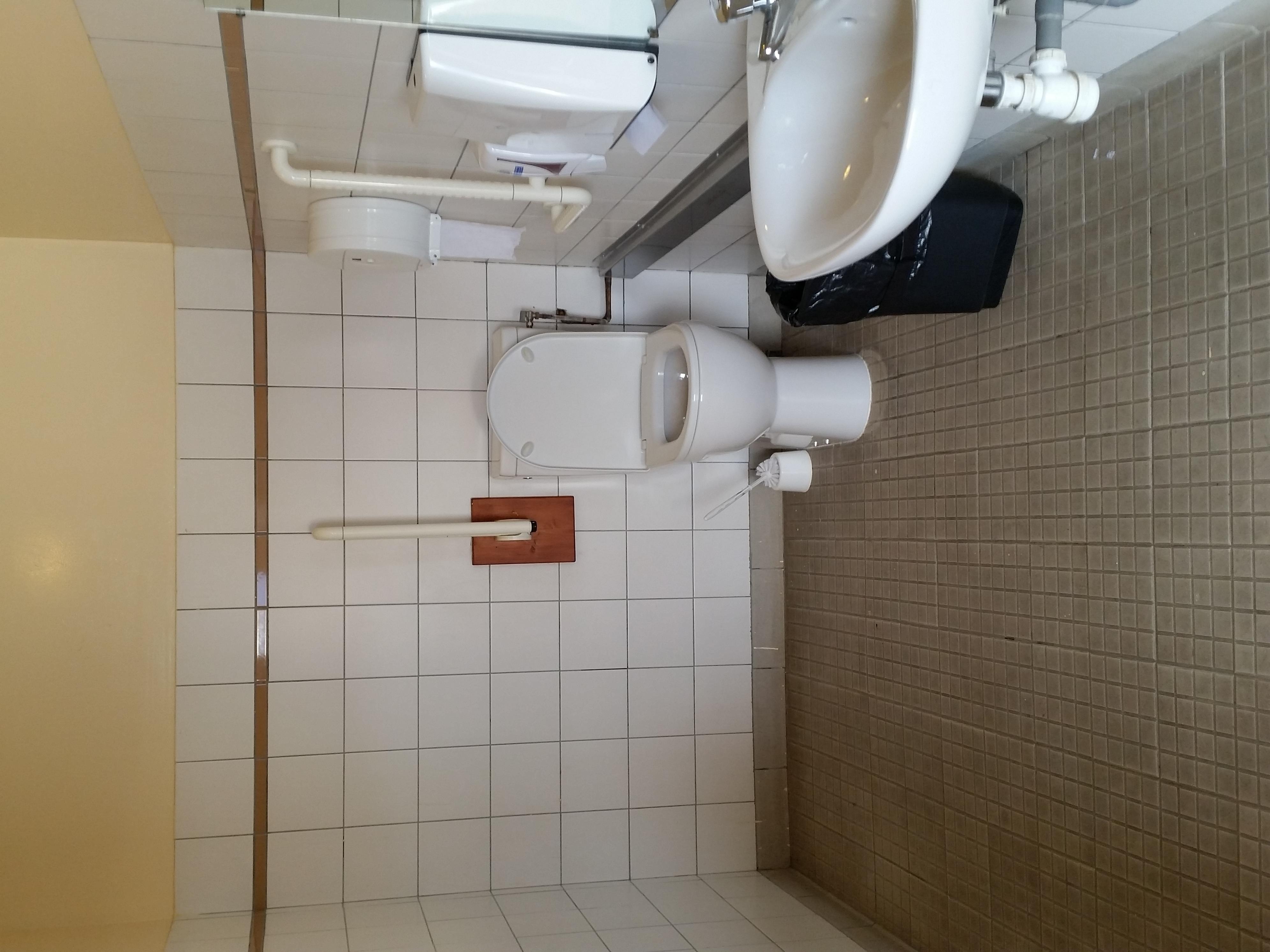 toilette handicap la plagne. Black Bedroom Furniture Sets. Home Design Ideas