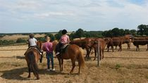 Country Pony Ranch Stage équitation western pour enfants Ⓒ Country Pony Ranch