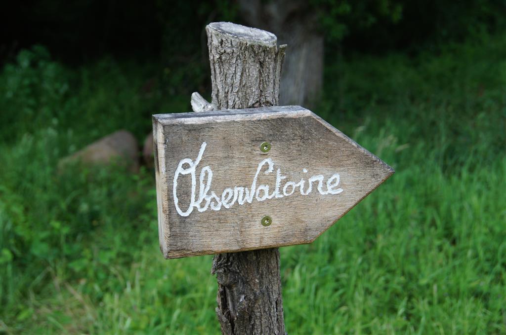 ENS de la Vauvre - Nassigny Sentier découverte Ⓒ Réserve Naturelle