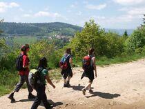 Randonnée VTT:  De Satillieu à Lalouvesc, entre crêtes et fonds de vallée, Satillieu, Ardèche